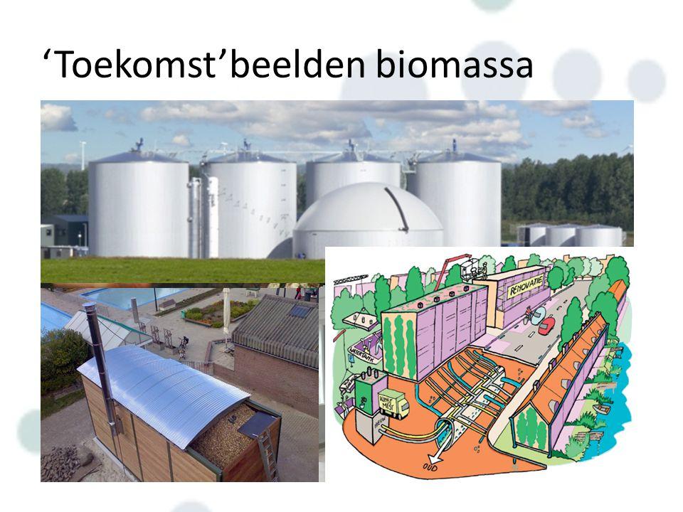 'Toekomst'beelden biomassa