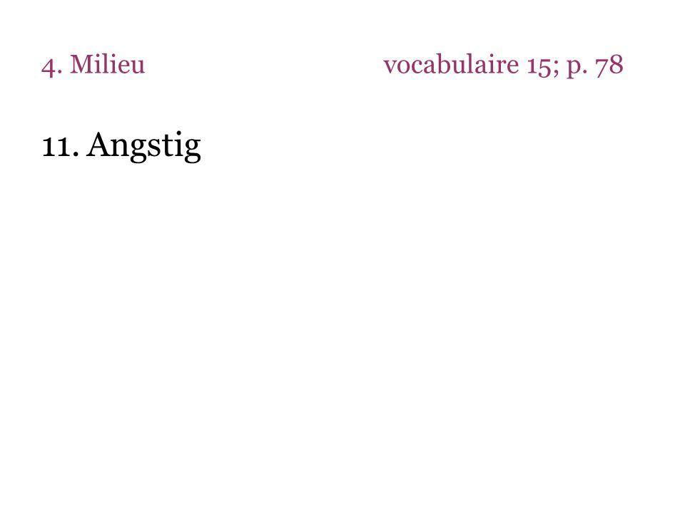 4. Milieu vocabulaire 15; p. 78 Angstig