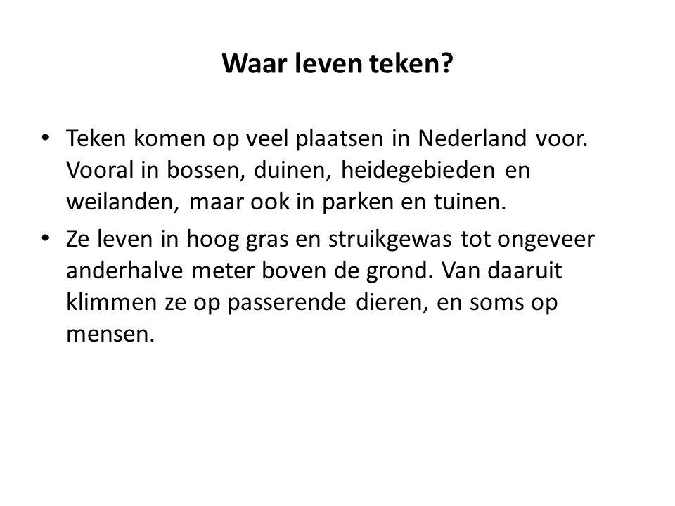 Waar leven teken Teken komen op veel plaatsen in Nederland voor. Vooral in bossen, duinen, heidegebieden en weilanden, maar ook in parken en tuinen.