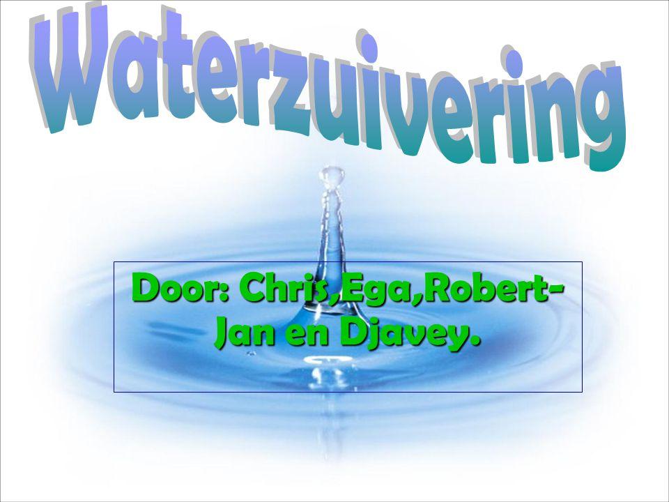 Door: Chris,Ega,Robert-Jan en Djavey.