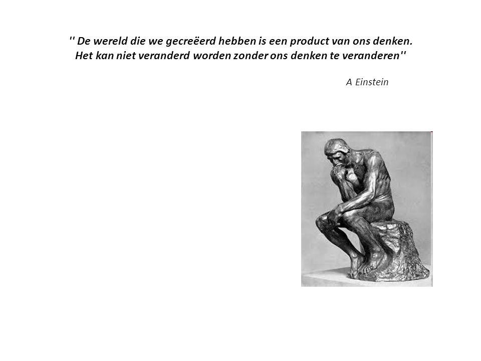 De wereld die we gecreëerd hebben is een product van ons denken