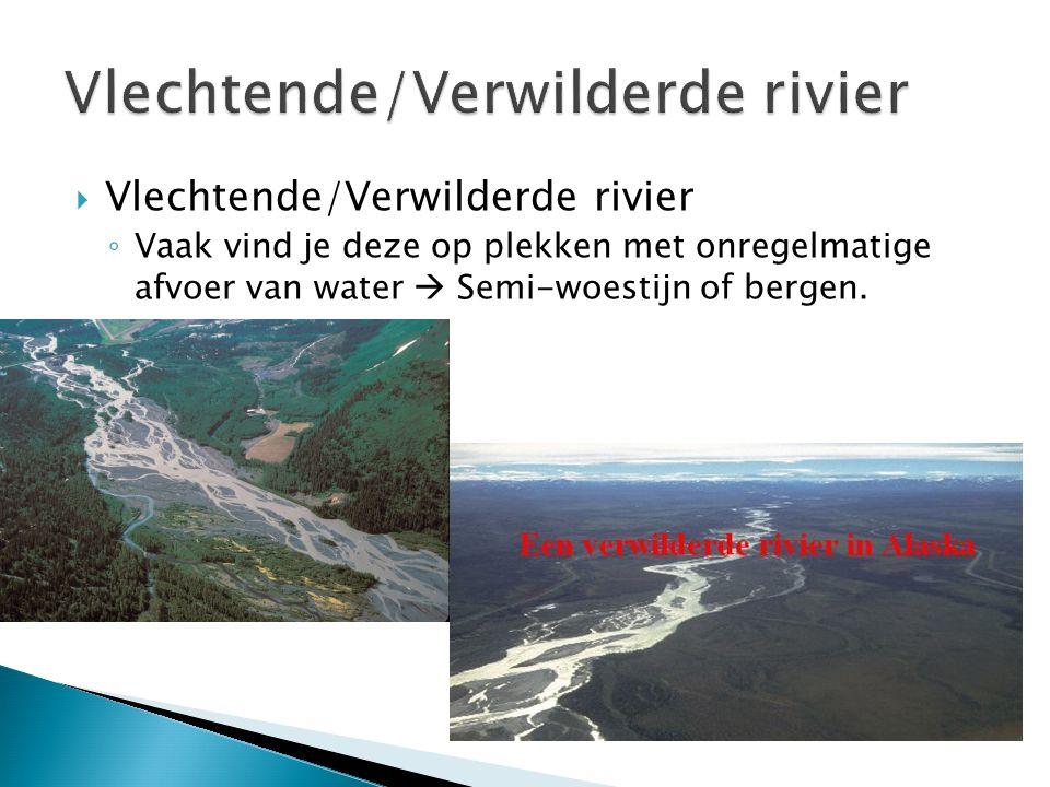Vlechtende/Verwilderde rivier