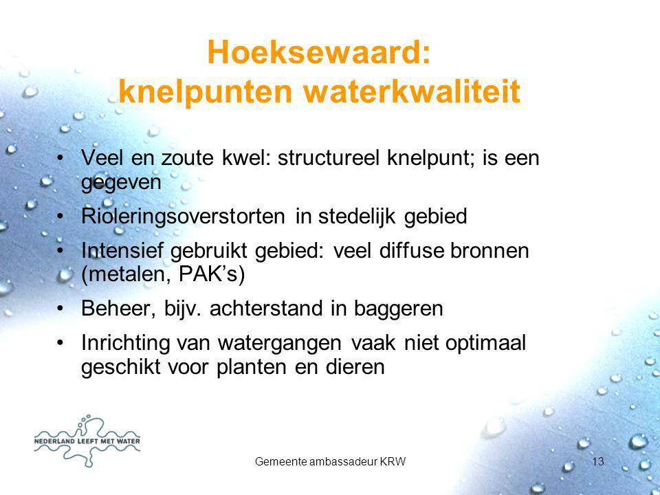Hoeksewaard: knelpunten waterkwaliteit