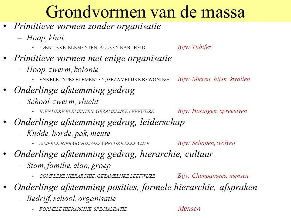 Grondvormen van de massa