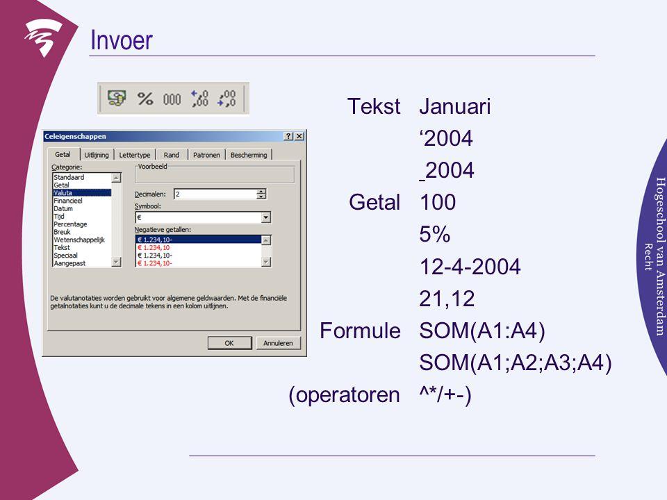 Invoer Tekst Getal Formule (operatoren Januari '2004 2004 100 5%