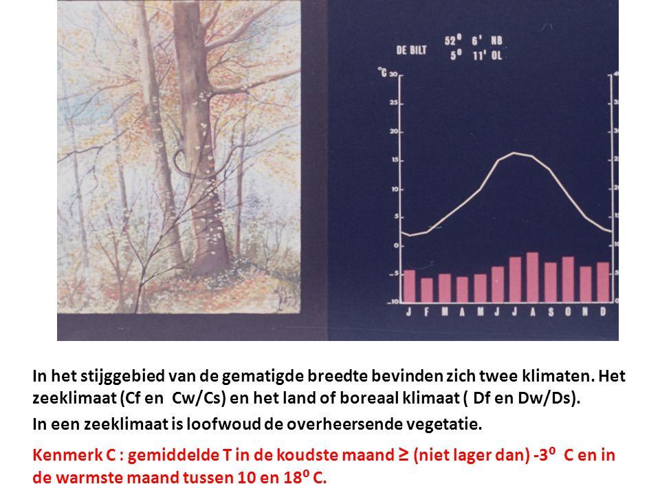In het stijggebied van de gematigde breedte bevinden zich twee klimaten. Het zeeklimaat (Cf en Cw/Cs) en het land of boreaal klimaat ( Df en Dw/Ds).