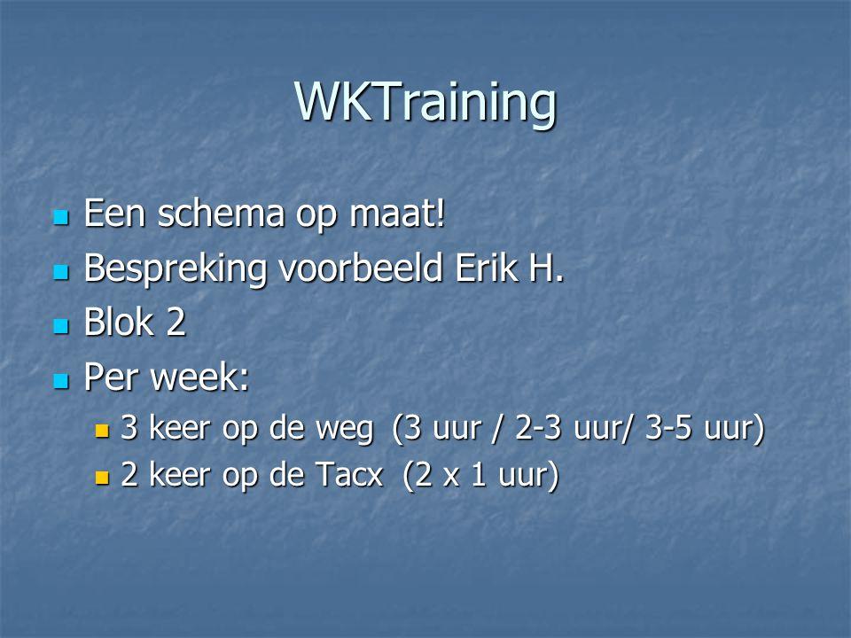 WKTraining Een schema op maat! Bespreking voorbeeld Erik H. Blok 2