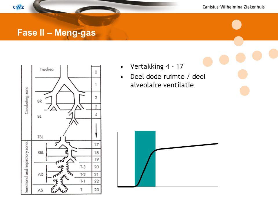 Fase II – Meng-gas Vertakking 4 – 17