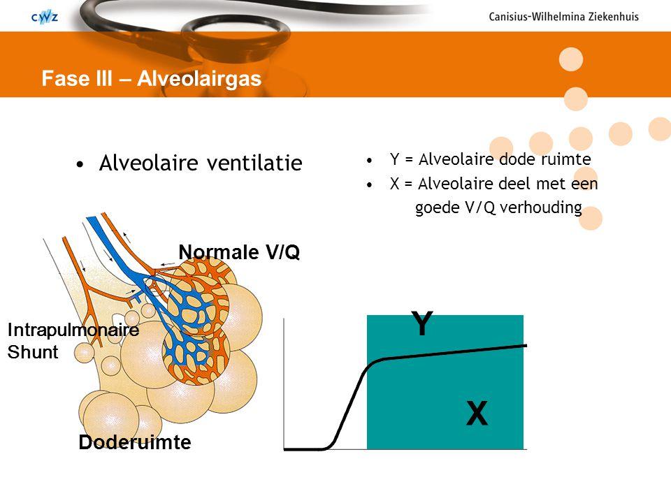Y X Alveolaire ventilatie Fase III – Alveolairgas Normale V/Q