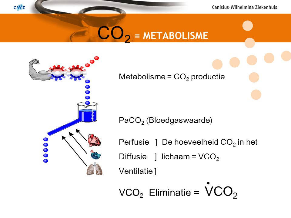 CO2 = METABOLISME VCO2 Eliminatie = VCO2 Metabolisme = CO2 productie