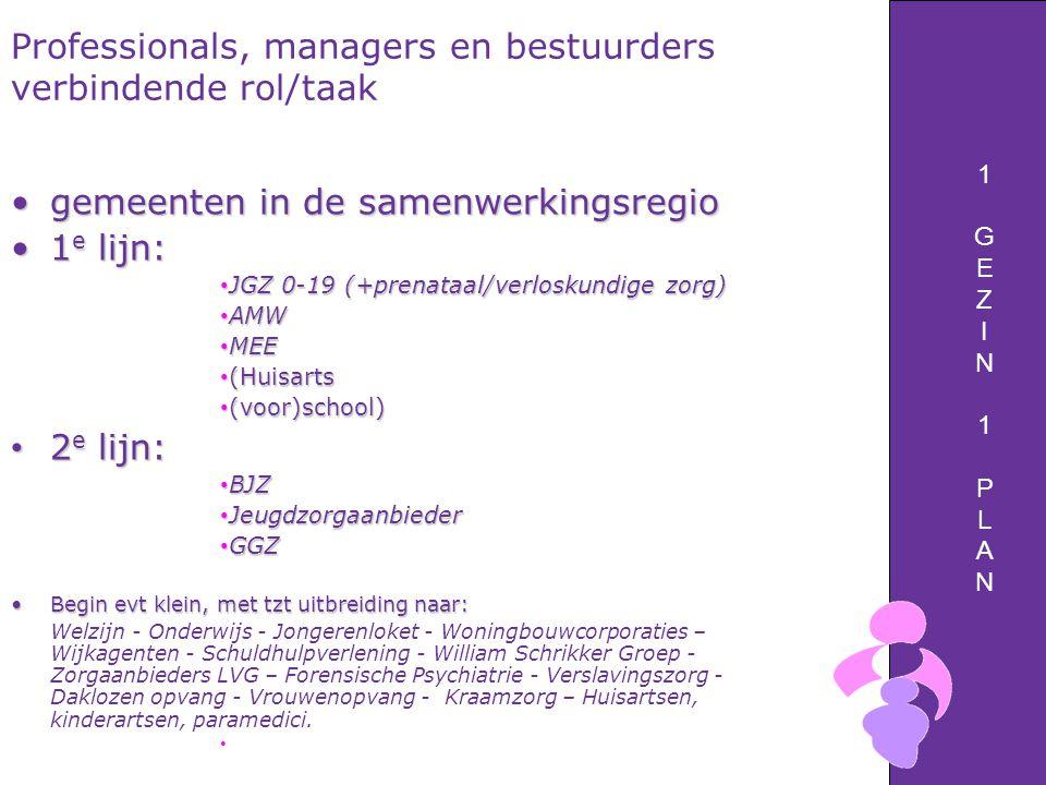 Professionals, managers en bestuurders verbindende rol/taak