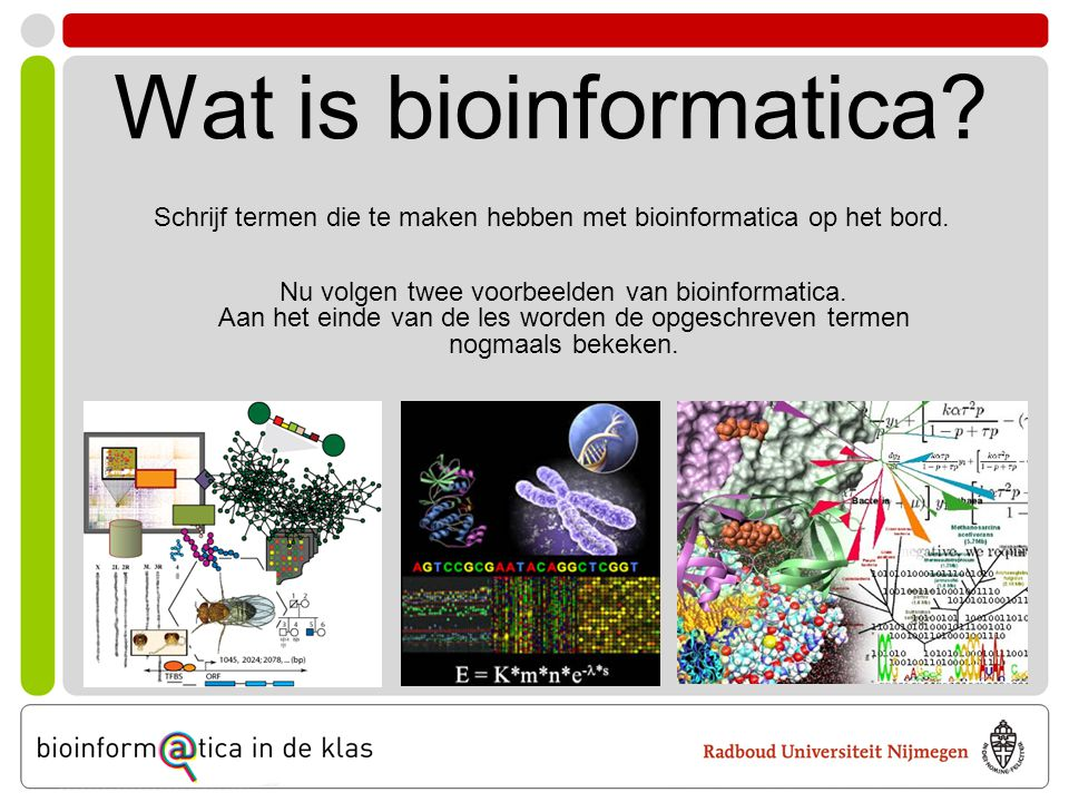 Wat is bioinformatica Schrijf termen die te maken hebben met bioinformatica op het bord. Nu volgen twee voorbeelden van bioinformatica.