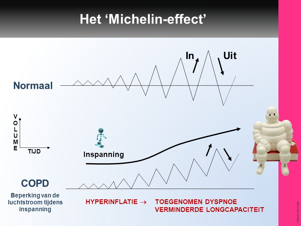 Het 'Michelin-effect'