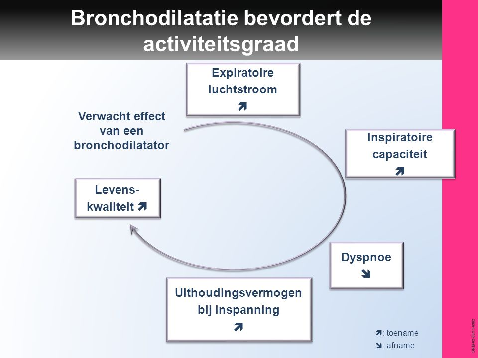 Bronchodilatatie bevordert de activiteitsgraad