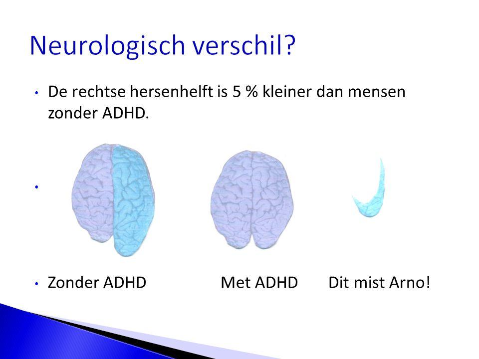 Neurologisch verschil