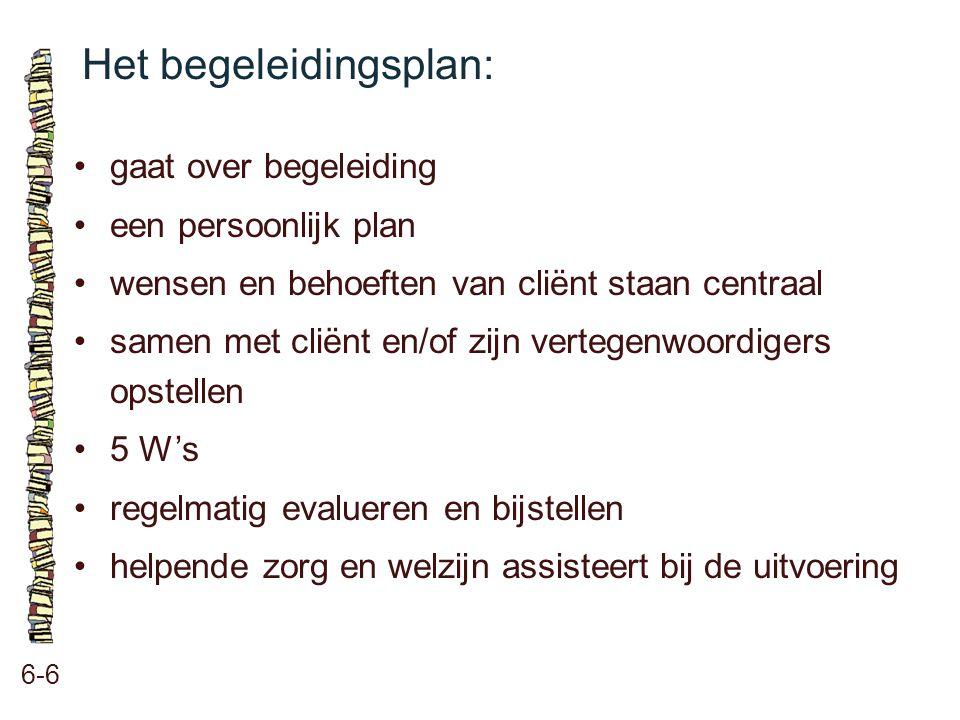 Het begeleidingsplan: