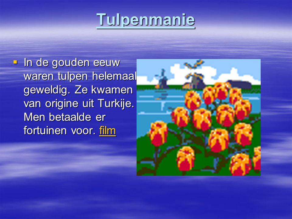 Tulpenmanie In de gouden eeuw waren tulpen helemaal geweldig.