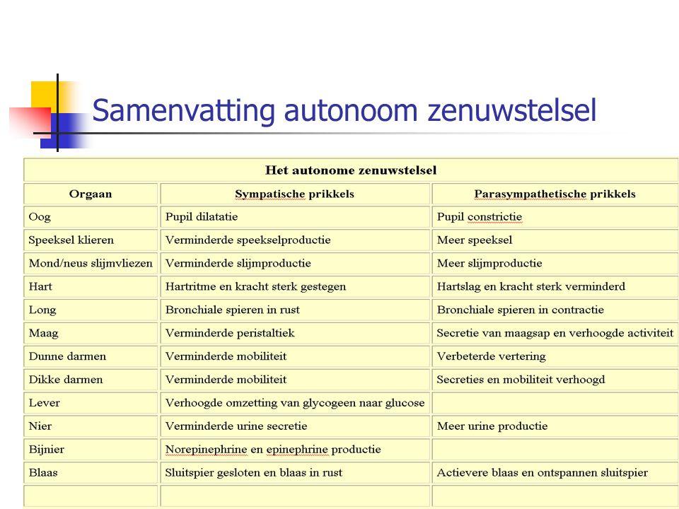 Samenvatting autonoom zenuwstelsel