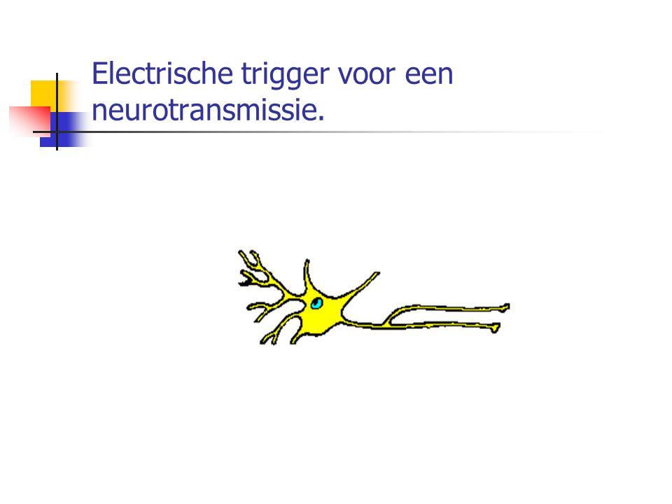Electrische trigger voor een neurotransmissie.