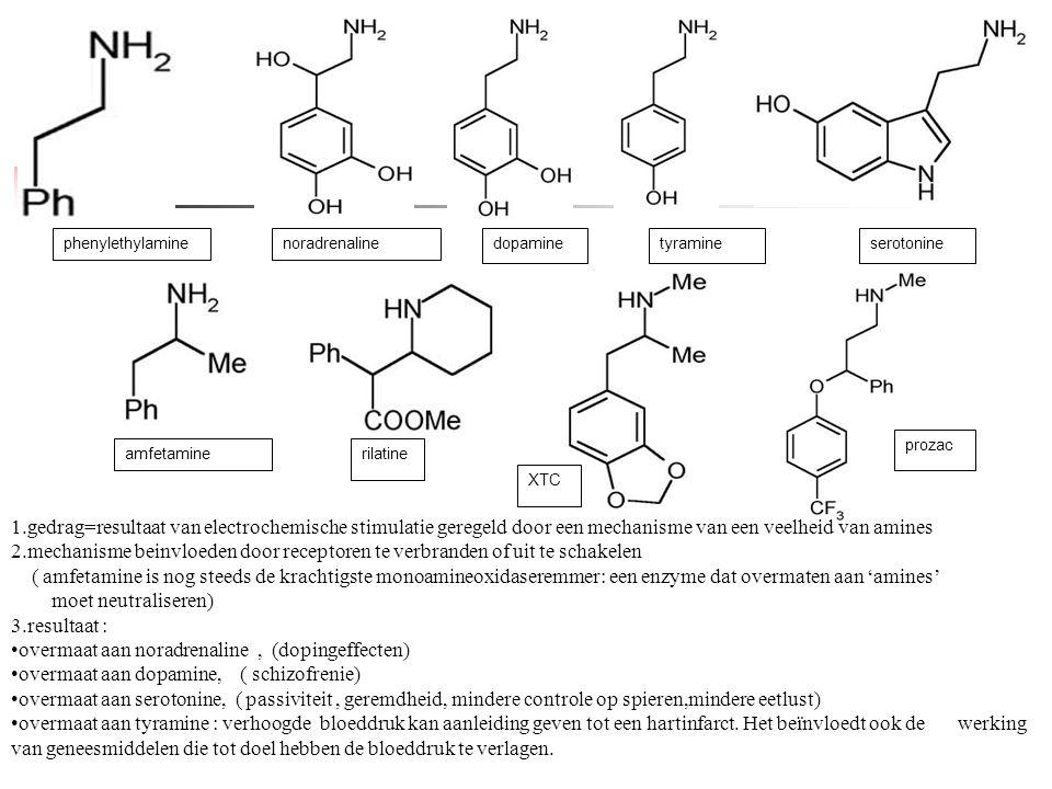 Phenylethylamine phenylethylamine. noradrenaline. dopamine. tyramine. serotonine. prozac. amfetamine.