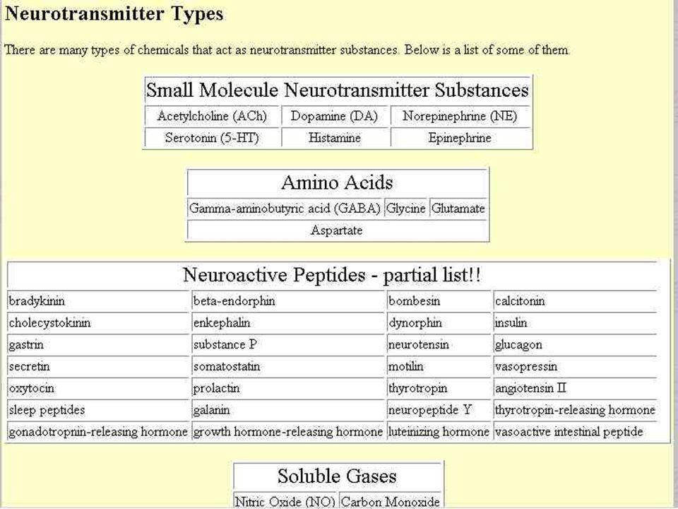 Neurotransmitter types