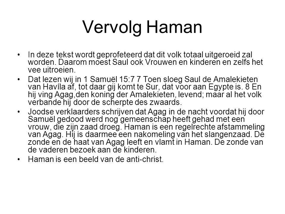 Vervolg Haman