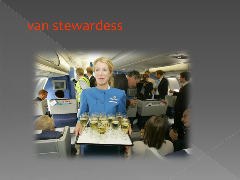 van stewardess
