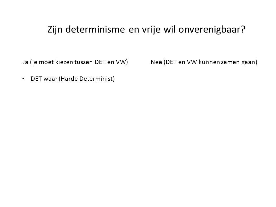 Ja (je moet kiezen tussen DET en VW)