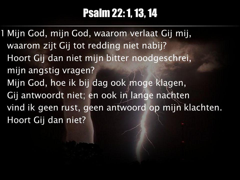 Psalm 22: 1, 13, 14