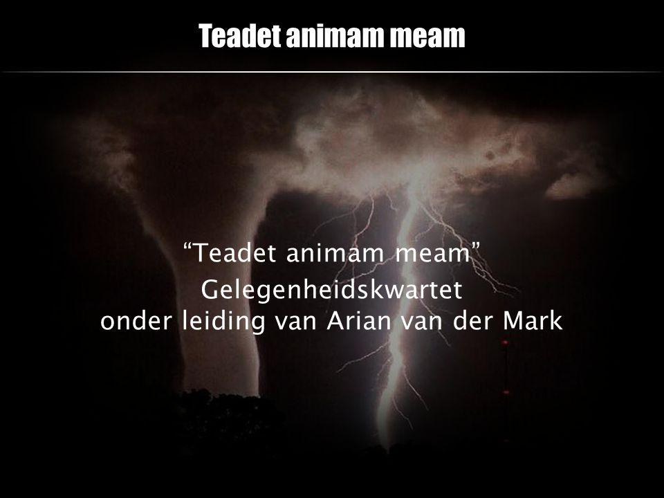 Teadet animam meam Teadet animam meam Gelegenheidskwartet onder leiding van Arian van der Mark
