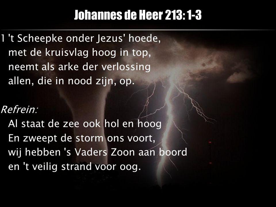 Johannes de Heer 213: 1-3