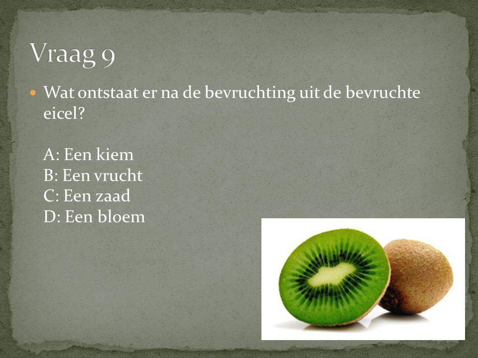 Vraag 9 Wat ontstaat er na de bevruchting uit de bevruchte eicel A: Een kiem B: Een vrucht C: Een zaad D: Een bloem.