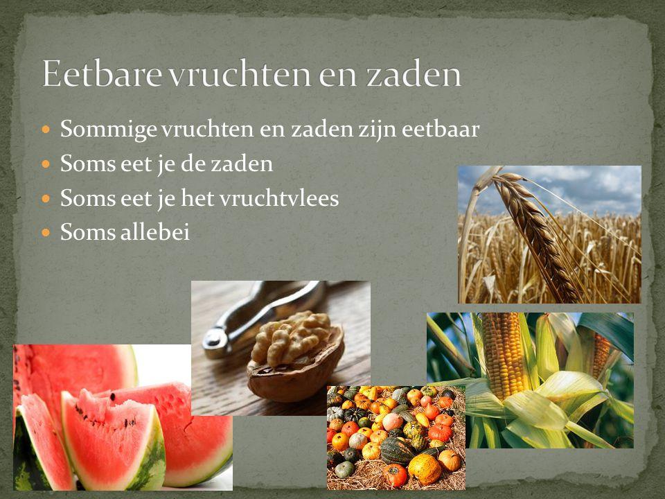 Eetbare vruchten en zaden