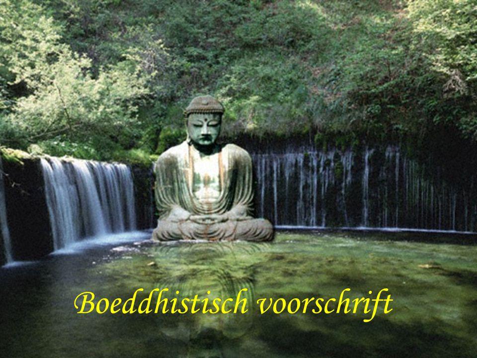 Boeddhistisch voorschrift