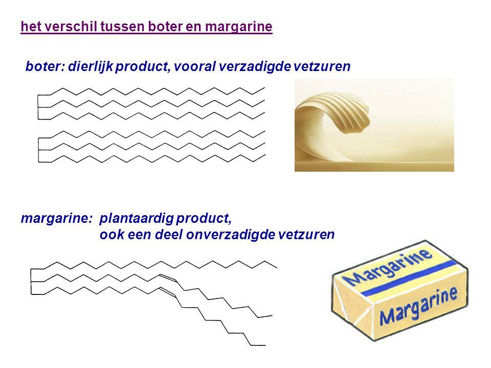 boter: dierlijk product, vooral verzadigde vetzuren