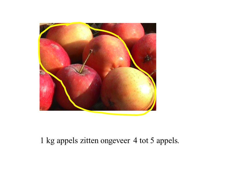 1 kg appels zitten ongeveer 4 tot 5 appels.