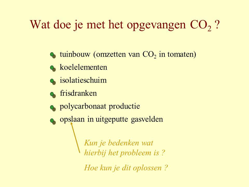 Wat doe je met het opgevangen CO2