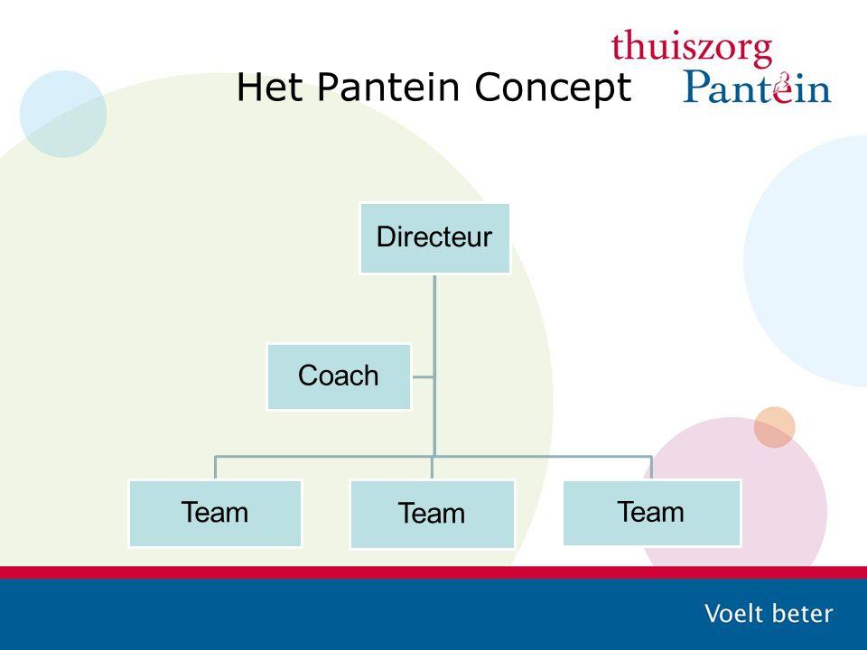 Het Pantein Concept Directeur Coach Team