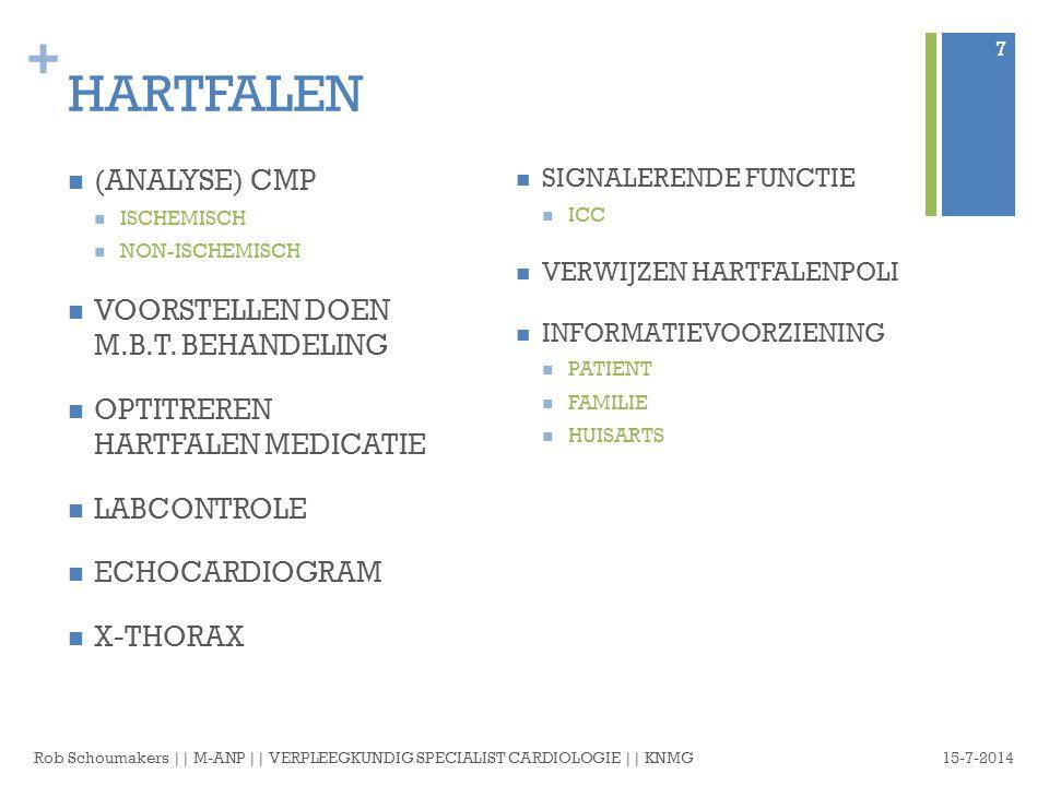 HARTFALEN (ANALYSE) CMP VOORSTELLEN DOEN M.B.T. BEHANDELING
