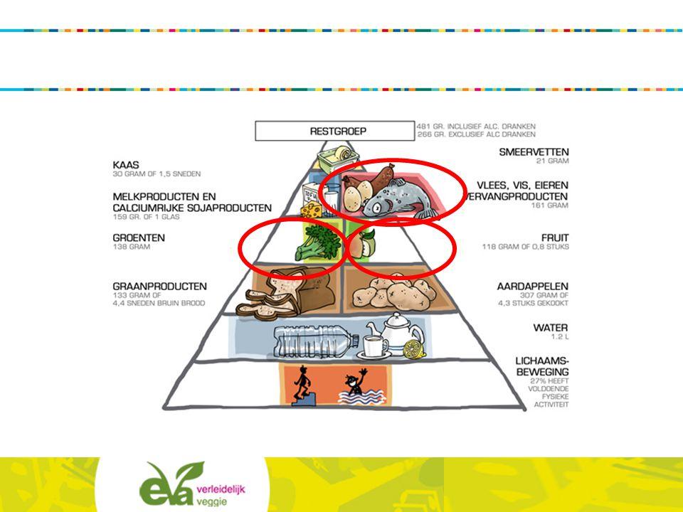 Dit is de actuele voedingsdriehoek, die toont wat we te weinig eten (witte vlakken) en wat we te veel eten (restgroep en eiwitgroep). Meer groenten/fruit en minder vlees eten wil bijna automatisch zeggen: meer vegetarisch eten.