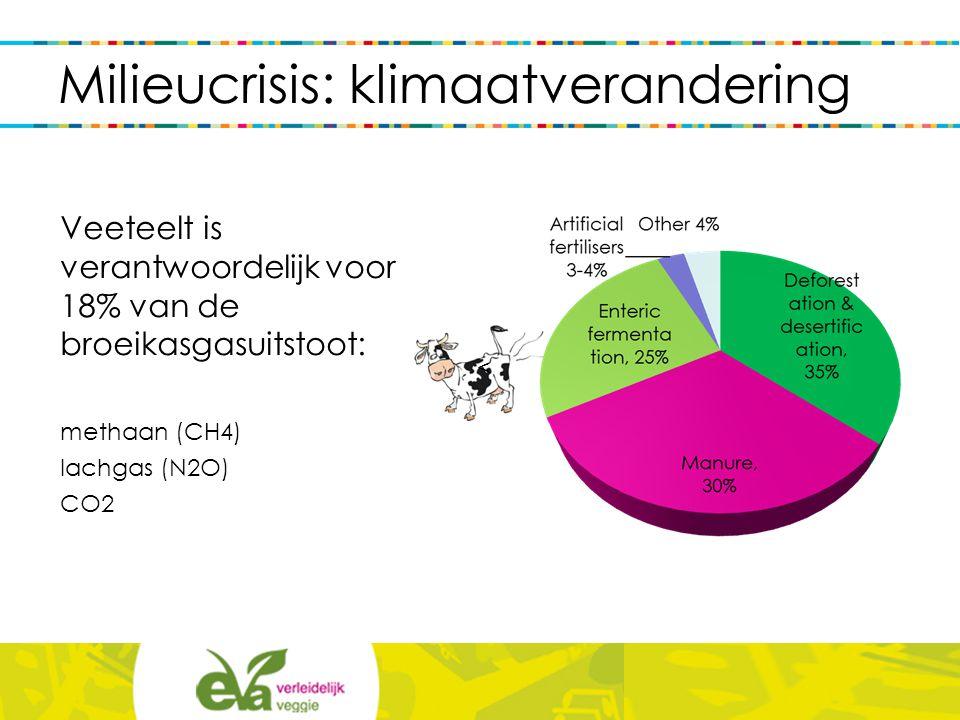Milieucrisis: klimaatverandering