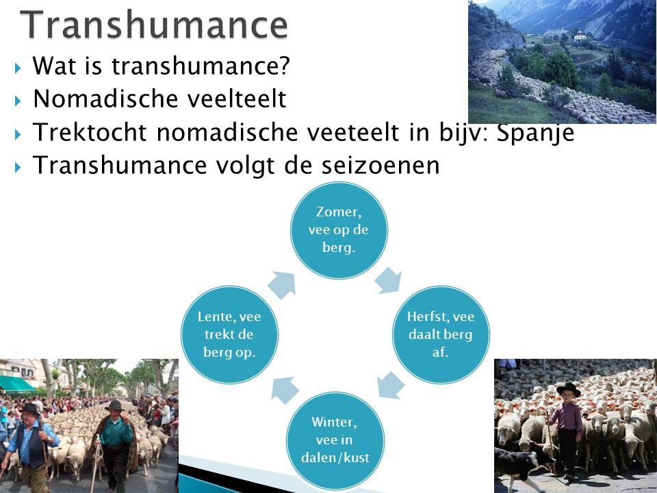 Transhumance Wat is transhumance Nomadische veelteelt
