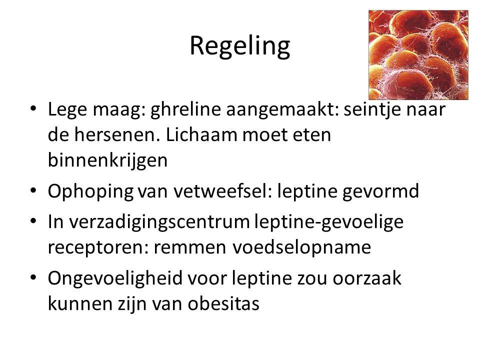 Regeling Lege maag: ghreline aangemaakt: seintje naar de hersenen. Lichaam moet eten binnenkrijgen.
