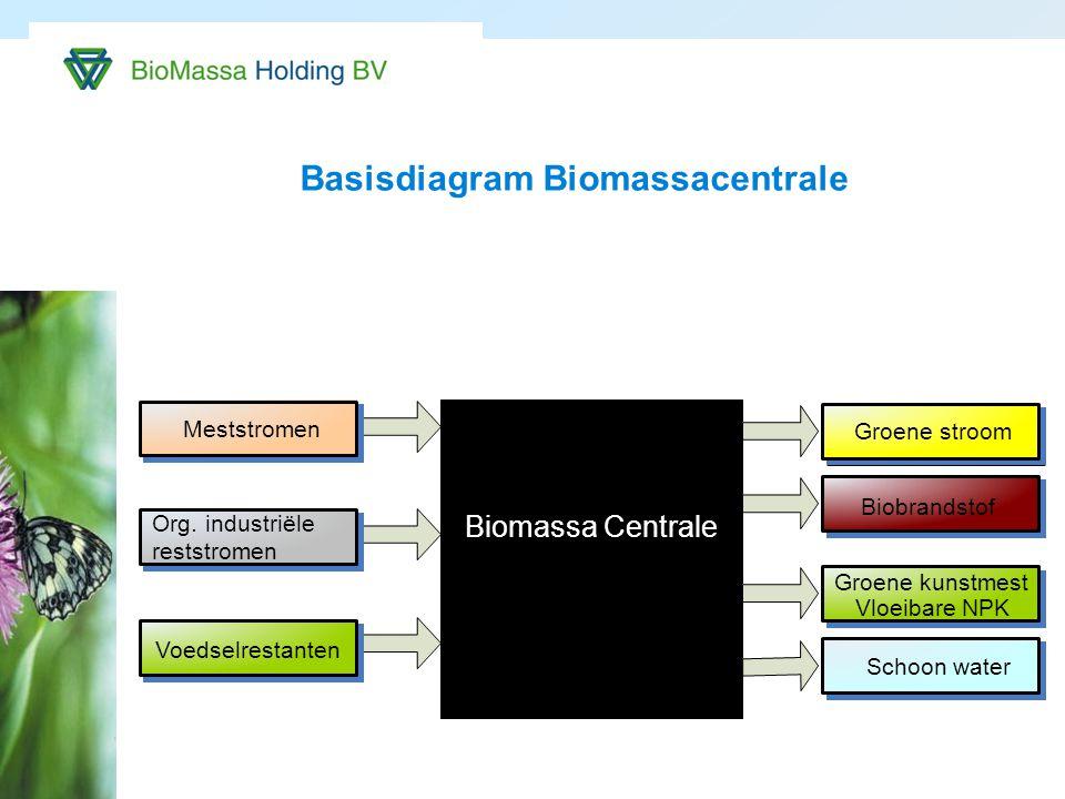 Basisdiagram Biomassacentrale