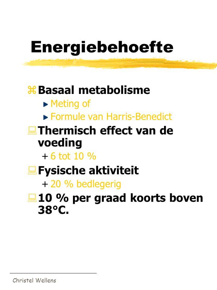 Energiebehoefte Basaal metabolisme Thermisch effect van de voeding