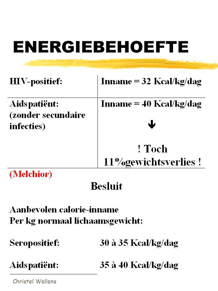 ENERGIEBEHOEFTE Christel Wellens