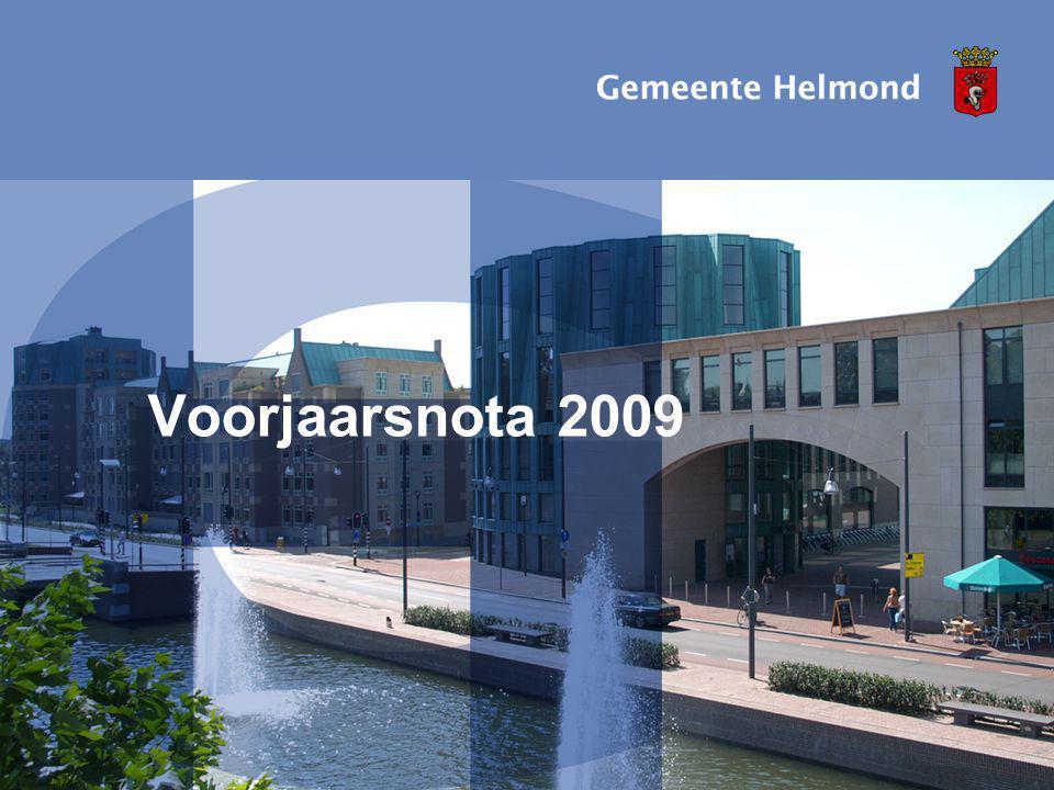 Voorjaarsnota 2009