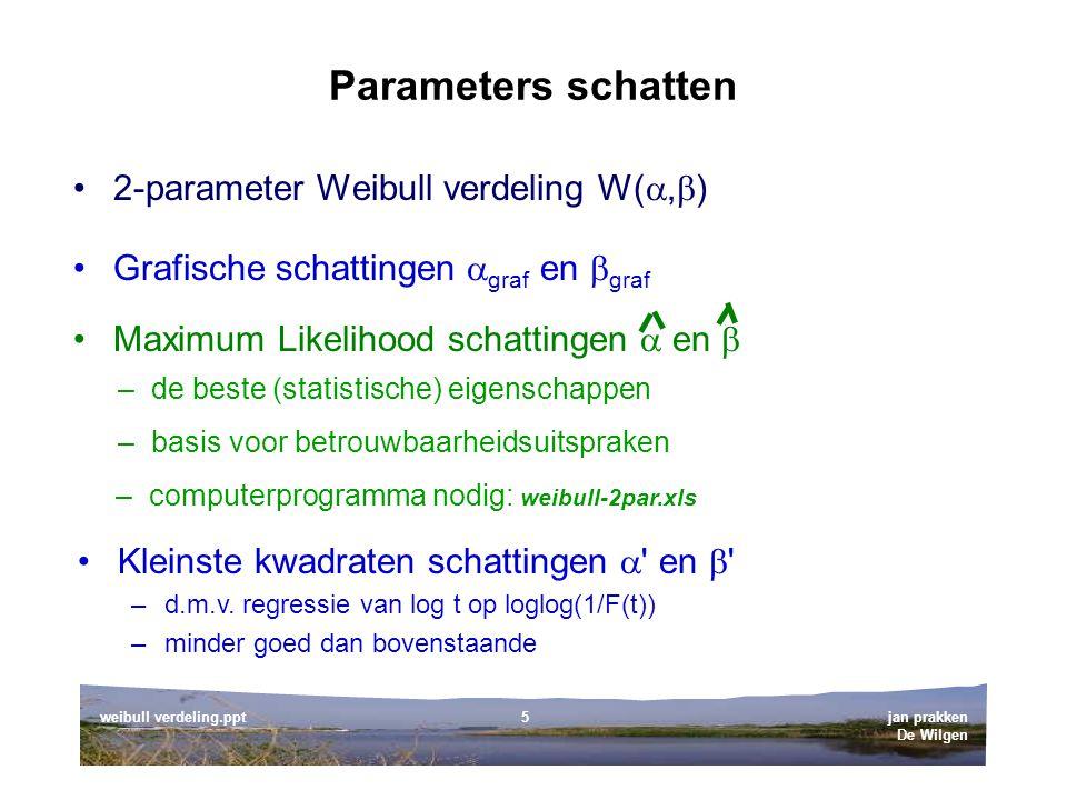 Parameters schatten 2-parameter Weibull verdeling W(,)