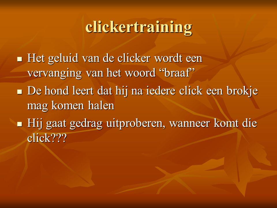 clickertraining Het geluid van de clicker wordt een vervanging van het woord braaf