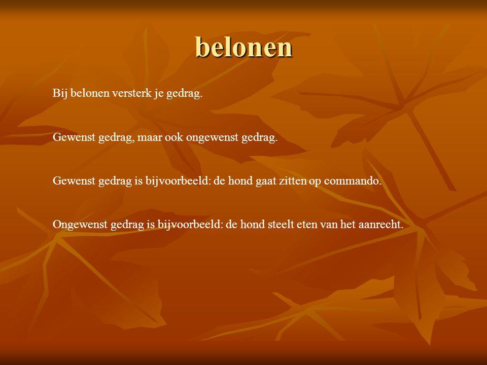 belonen Bij belonen versterk je gedrag.